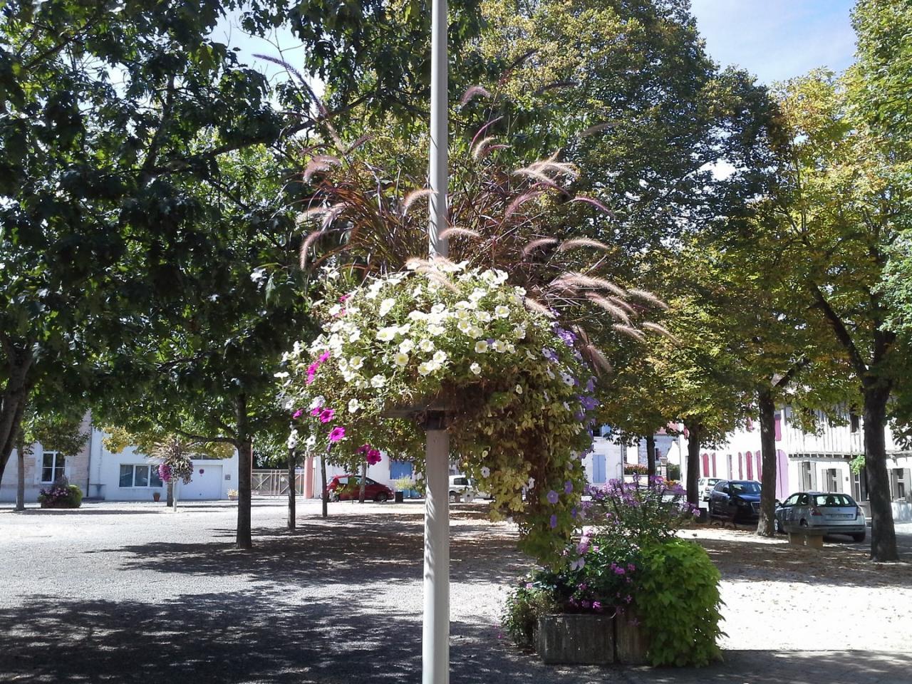 Les fleurs (2)